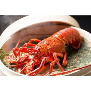 最高の漁場が育む日本一の「伊勢海老」 長い髭と腰の曲がった姿から、長寿を祝う縁起物として古くから喜ば...