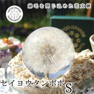 ハフォドグレンジ セイヨウタンポポ Sサイズ 花文鎮 フラワー ペーパーウエイト  HG01S|yuyu-honpo