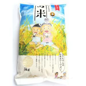 令和3年産 新米  魚沼産コシヒカリ 吉村さんちのお米  精米 5kg 非BL クラシックコシヒカリ 産地直送|yuyu-honpo