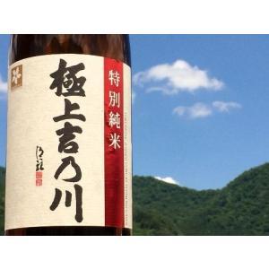 吉乃川 極上吉乃川 特別純米酒 720ml カートン入