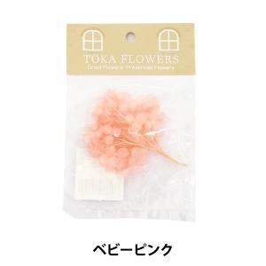 ハーバリウムの花材としても最適♪ お好きなお色・花材の組み合わせで、 オリジナルの作品をぜひ作ってみ...
