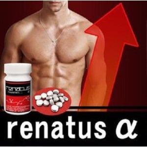 Renatus-α レナトゥスα 送料無料 レナトゥス シト...