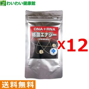 【12個セット】核酸エナジー お徳用アルミパック 300粒
