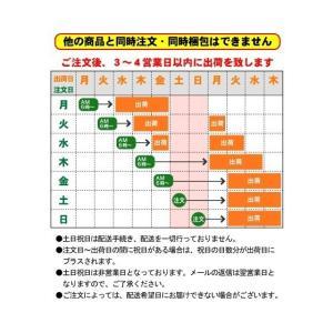クリスタルガイザー 500ml × 48本入 ...の詳細画像3