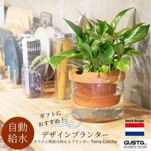 植木鉢 プランター おしゃれ 自動給水 観葉植物 欧州 ブランド GUSTA Terra Cotch...