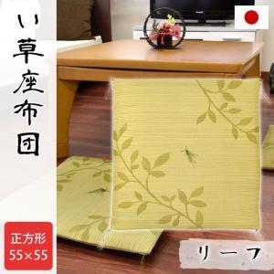 い草 座布団 55×55cm 夏 日本製 ウレタン入り 座布クッション リーフ【4枚以上送料無料】|zabu