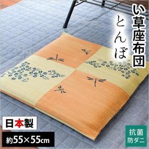 い草 座布団 55×55cm 夏 日本製 抗菌 防ダニ 座布クッション とんぼ【4枚以上送料無料】|zabu