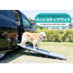 Pet Gear Full Length Wide Tri-Fold Pet Ramp