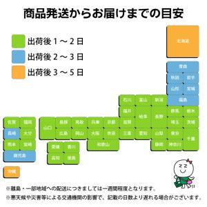 ■ポスト投函■[貝印]関孫六 ツメキリ type101 (HC1800)|zagzag|03