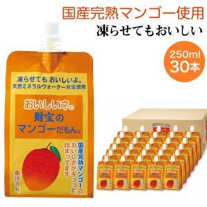 完熟マンゴーは天然ミネラルやカロテンをたっぷり含み、とろけるような甘さで大人気の果実です。甘くておい...
