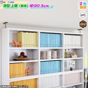 薄型 上置き棚 幅120.5cm 本棚用 書棚用 オープンラック 壁面収納 上棚 文庫本 コミック CD DVD ブルーレイ 収納 可動棚付|zak-kagu