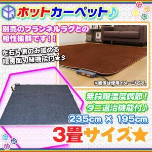 ホットカーペット 3畳タイプ 720W 電気カーペット 無段階温度調節 床暖房 カーペット 三畳 幅235cm 奥行195cm ダニ退治機能付 zak-kagu