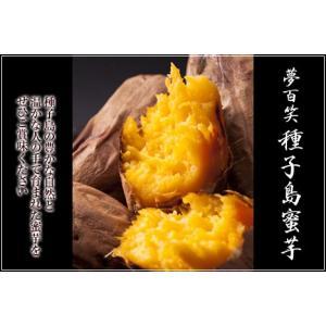 種子島蜜芋 安納イモ S玉サイズ5Kg zaka-mmc