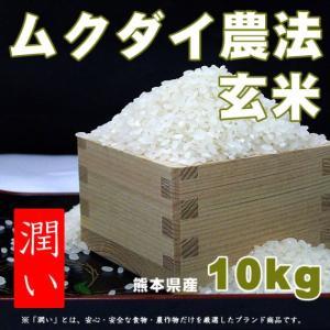 【ムクダイ農法】熊本県人吉の米 「潤い」玄米10kg【産地直送】 zaka-mmc