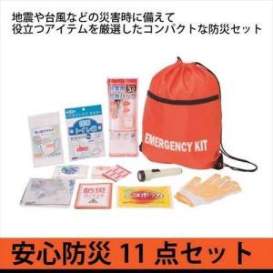防災セット 11点セット 【安全防災251】 防災袋 非常用...