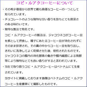 100% コピ・ルアク  ドリップコーヒー お試しパック [ 1袋10g入り×2袋 ] メール便 送料無料|zakka-hana87-y|02