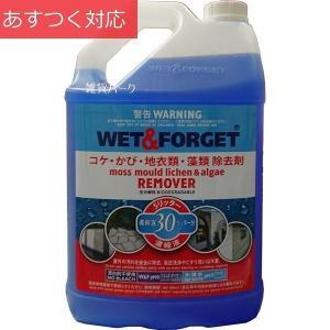 苔・カビ類除去 濃縮液 5L WET&FORGET