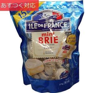 ミニブリーチーズ 25g x 15個 ILE DE FRANCE
