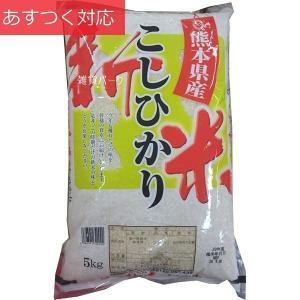 熊本県産 こしひかり 5kg 新米