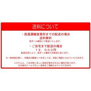アクセス製 電動シニアカー パセリ2(赤)(カゴ・ステッキホルダー付き)【免許不要】【ヘルメット不要】【ナンバー不要】|zakkaichibaev|05
