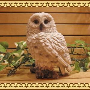 リアルなふくろうの置物 白フクロウのフギア 鳥のオブジェ 不苦労 オウル ガーデニング 玄関先 陶器|zakkakirara
