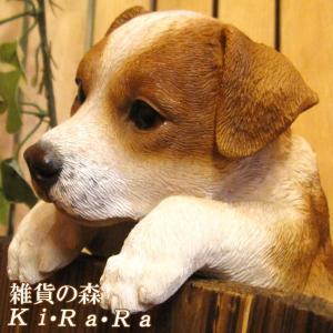 犬の置物 ジャックラッセルテリア リアルな犬の置物 ぶらさがりドッグ 子いぬのフィギア イヌのオブジェ ガーデニング 玄関先 陶器 zakkakirara