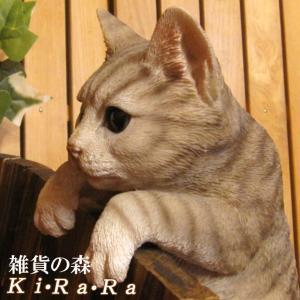 猫の置物 リアルな猫の置物 ぶらさがりキャット ブラウングレー ねこのフィギア ネコのオブジェ ガーデニング 玄関先 陶器 アメショー zakkakirara