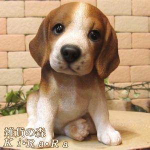 犬の置物 ビーグル リアルな犬の置物 お座りタイプ 子いぬのフィギア イヌのオブジェ ガーデニング 玄関先 陶器 zakkakirara