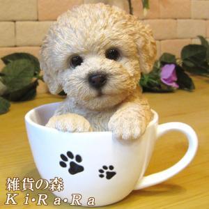 犬の置物 プードル ティーカップドッグ Aタイプ リアルな子いぬのフィギア イヌのオブジェ 動物オブジェ ガーデンオーナメント 装飾|zakkakirara