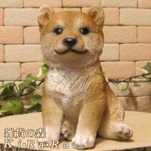 犬の置物 柴犬 リアルなイヌの置物 お座り A 子いぬのフィギア ドッグオブジェ 玄関先 ガーデニング 陶器 zakkakirara