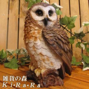 ふくろう 置物 フクロウAタイプ リアルな鳥のフィギア 不苦労 オウルオブジェ ガーデニング 玄関先 陶器 縁起物|zakkakirara