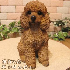 犬の置物 プードル B リアルな犬の置物 お座りタイプ いぬのフィギア イヌのオブジェ ガーデニング 玄関先 陶器|zakkakirara
