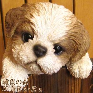 犬の置物 シーズー リアルな犬の置物ぶらさがりドッグ 子いぬのフィギア イヌのオブジェ ガーデニング 玄関先 陶器 zakkakirara