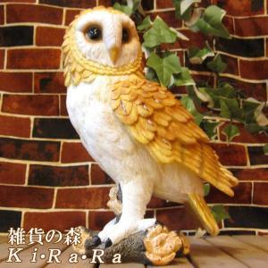 ふくろうの置物 フクロウCタイプ リアルな鳥のフィギア 不苦労 縁起物 オウルオブジェ ガーデニング 玄関先 陶器|zakkakirara