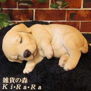 リアルなイヌの置物 レジン製の犬の良く出来た造形 ラブラドールレトリバー お昼寝中  ■サイズ・容量...