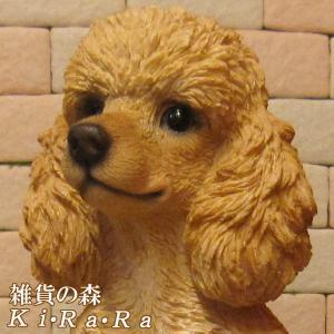 犬の置物 プードル ラージサイズ 大きくてリアルな犬の置物 いぬのフィギア イヌのオブジェ ガーデニング 玄関先 陶器|zakkakirara