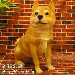 犬の置物 柴犬 大きくてリアルな 成犬 お座り ビッグサイズ いぬのフィギア イヌのオブジェ ガーデニング 玄関先 陶器|zakkakirara