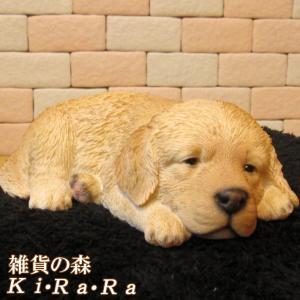 犬の置物 ゴールデンレトリバー リアルな犬の置物 ウトウト・ねむねむ 子いぬのフィギア イヌのオブジェ ガーデニング 玄関先 陶器|zakkakirara