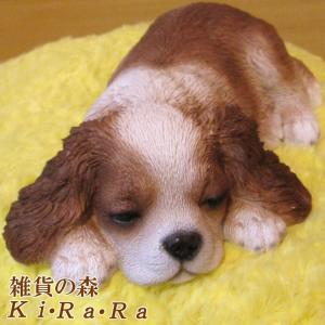 犬の置物 キャバリア リアルな犬の置物 ウトウト・ねむねむ 子いぬのフィギア イヌのオブジェ ガーデニング 玄関先 陶器|zakkakirara