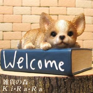 犬の置物 チワワ ウエルカムブック リアルな いぬの置物 犬雑貨 イヌのフィギア オブジェ ガーデニング 玄関先 陶器 ガーデン|zakkakirara