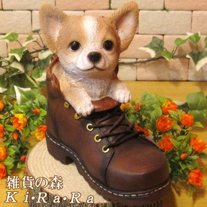 犬の置物 チワワ リアルな犬の置物 シューズドッグ 革靴タイプ 子いぬのフィギア イヌのオブジェ ガーデニング 玄関先 陶器|zakkakirara
