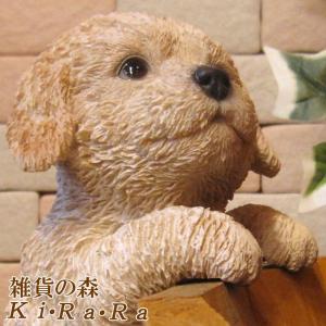 犬の置物 プードル ライトブラウン リアルな犬の置物 ぶらさがりドッグ 子いぬのフィギア イヌのオブジェ ガーデニング 玄関先 陶器|zakkakirara