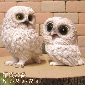 ふくろう 置物 リアルな鳥の置物 白フクロウ親子 2体セット オウルオブジェ 縁起物 ガーデニング 玄関先 陶器|zakkakirara