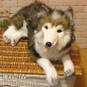 犬の置物 シベリアンハスキー リアルないぬのぬいぐるみ いぬ イヌ ドッグ 動物 アニマル オブジェ 雑貨 フィギュア モチーフ インテリア|zakkakirara