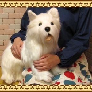 犬の置物 ウエストハイランドテリア ビッグサイズ リアルな犬のぬいぐるみ いぬ イヌ ドッグ 動物 アニマル オブジェ 雑貨 フィギュア|zakkakirara