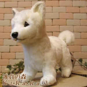 犬の置物 北海道犬 リアルないぬのぬいぐるみ いぬ イヌ ドッグ 動物 アニマル オブジェ 雑貨 フィギュア モチーフ インテリア|zakkakirara