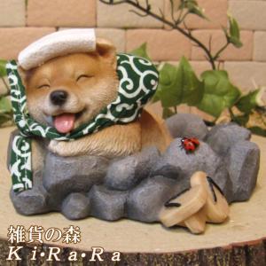 犬の置物 柴犬 リアルな犬の置物 柴助 温泉にて 子いぬのフィギア イヌのオブジェ ガーデニング 玄関先 陶器|zakkakirara