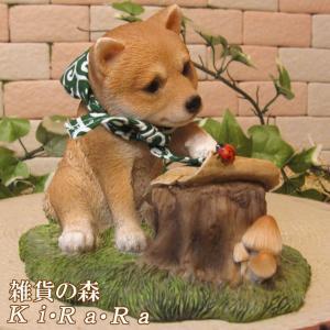犬の置物 柴犬 リアルな犬の置物 柴助 勉強中! 子いぬのフィギア イヌのオブジェ ガーデニング 玄関先 陶器|zakkakirara