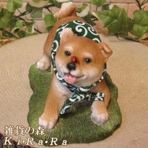 犬の置物 柴犬 リアルな犬の置物 柴助 アピール中! 子いぬのフィギア イヌのオブジェ ガーデニング 玄関先 陶器|zakkakirara