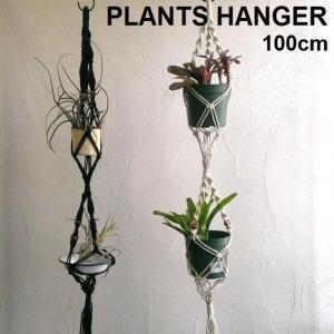 プランツハンガー 植物 エアプランツ ハンギング 吊るす 飾る 100cm PLANTS HANGER ダブル|zakkamag